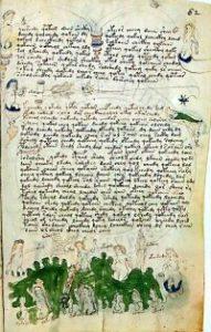 Voynich scritte